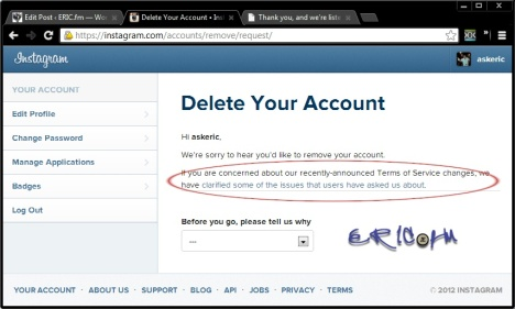 I just put instagram on probation regarding terms of use eric instagram remove request notice ccuart Image collections